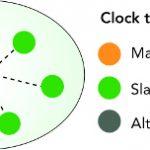 sincronización de backhaul móvil